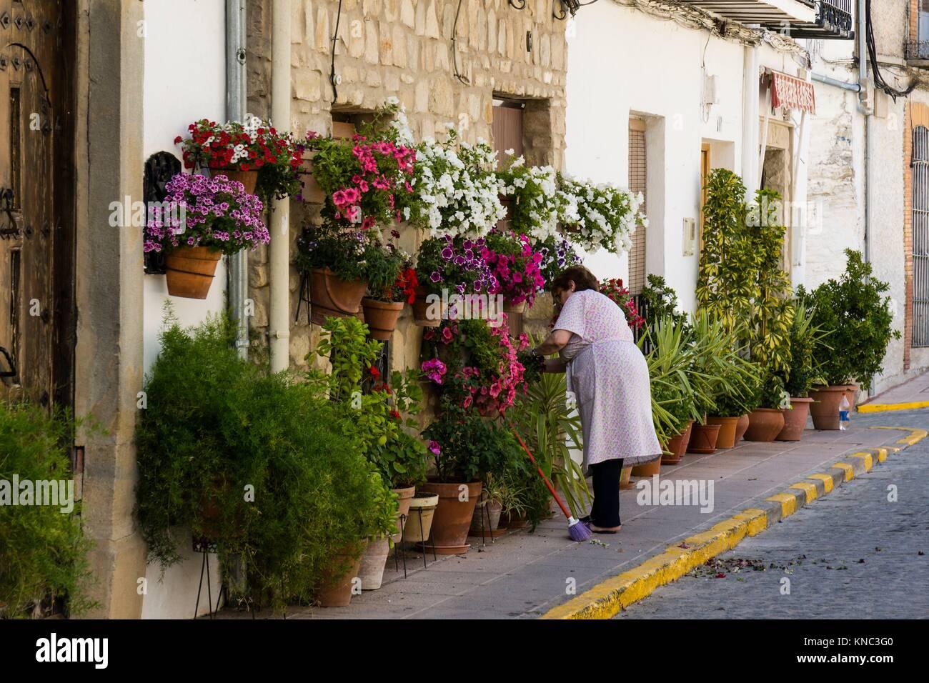 macetas de flores en la calle, Iznatoraf, Loma de Ubeda, provincia de Jaén en la comarca de las Villas, spain, - Stock Image