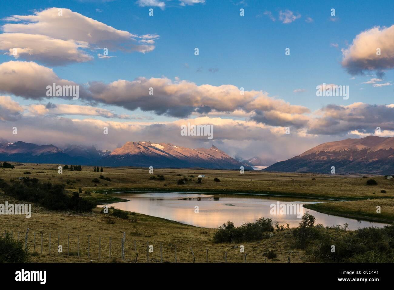 Pampas near Lago Roca, El Calafate ,Parque Nacional Los Glaciares Patagonia, Argentina. - Stock Image