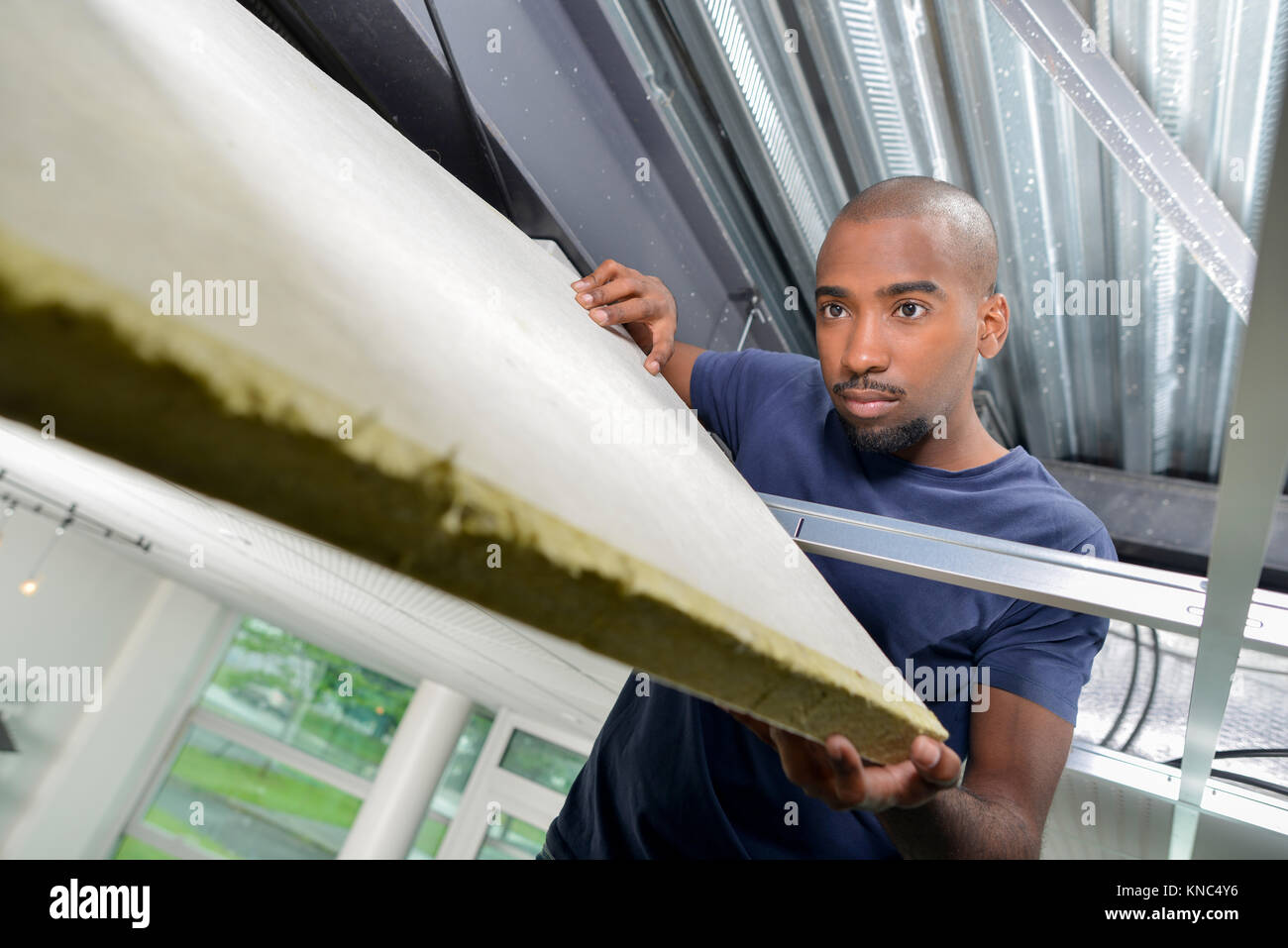 Builder holding insulating material in roofspace Stock Photo