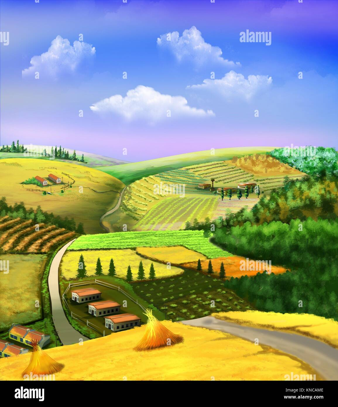 Digital painting of the rural landscape with wheat fields, grove, road and cloudy sky. - Stock Image