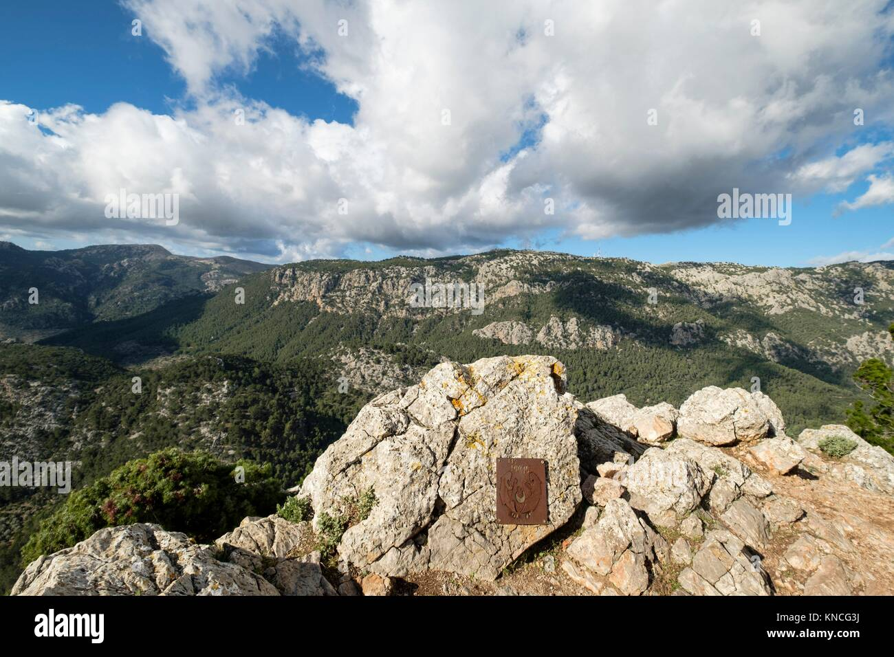 Penyal d Honor, 808 meters, Comuna de Bunyola, communal land, Bunyola, Mallorca, balearic islands, spain, europe. - Stock Image