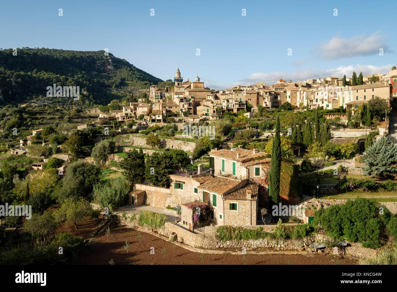 Cartuja , Valldemossa, Sierra de Tramuntana, Mallorca, Balearic Islands, spain, europe. Stock Photo