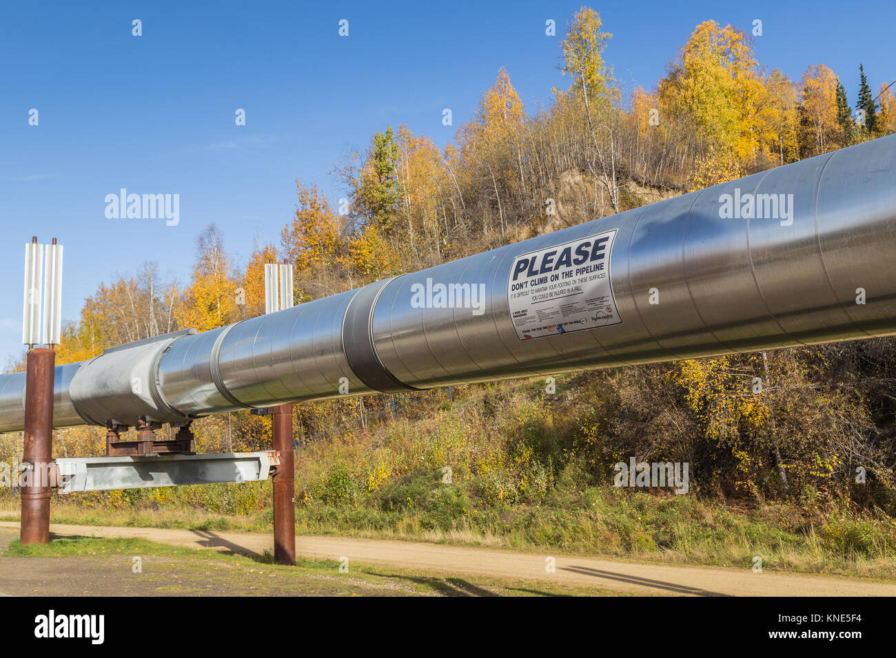 The Trans-Alaska Pipeline System (TAPS) also called the Aleyska Pipeline transports oil 800 miles from Prudhoe Bay - Stock Image