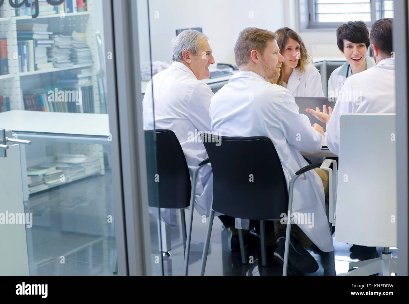 Meeting of doctors, clinical session, Hospital - Stock Image
