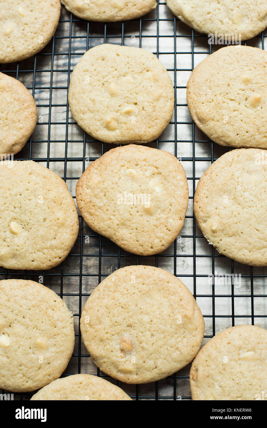 White chocolate chip cookies cooling on a rack, close-up - Stock Image