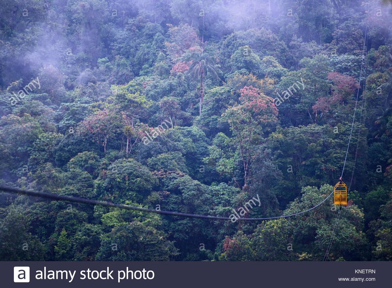 Cable car at the rainforest in Mindo, close to the equator, Mindo, Pichincha, Ecuador, South America - Stock Image