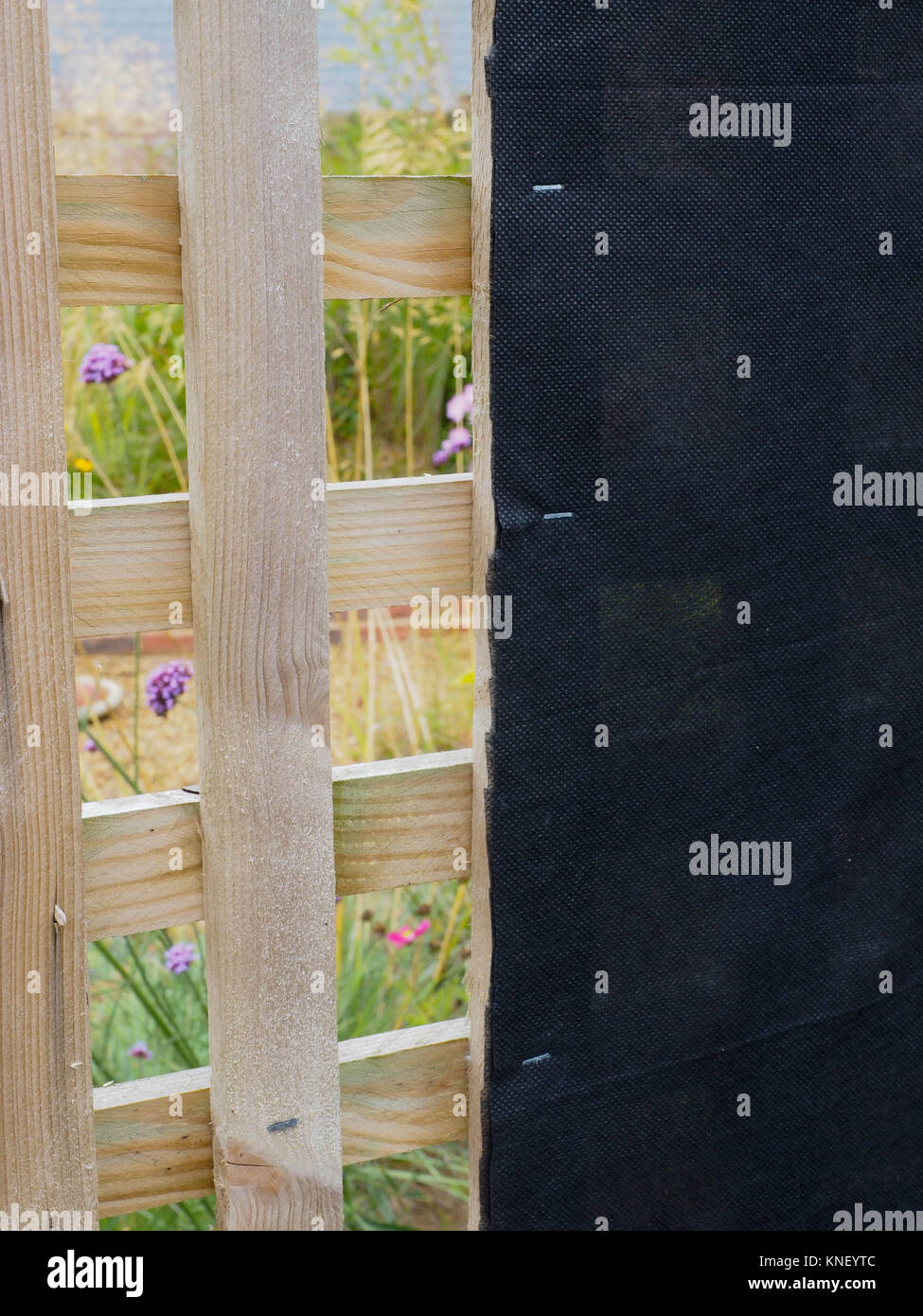 OPEN GARDEN TRELLIS WITH BLACK FABRIC STAPLED TO INSIDE THUS SHIELDING VIEW OF OIL TANK SITUATED IN REAR GARDEN Stock Photo