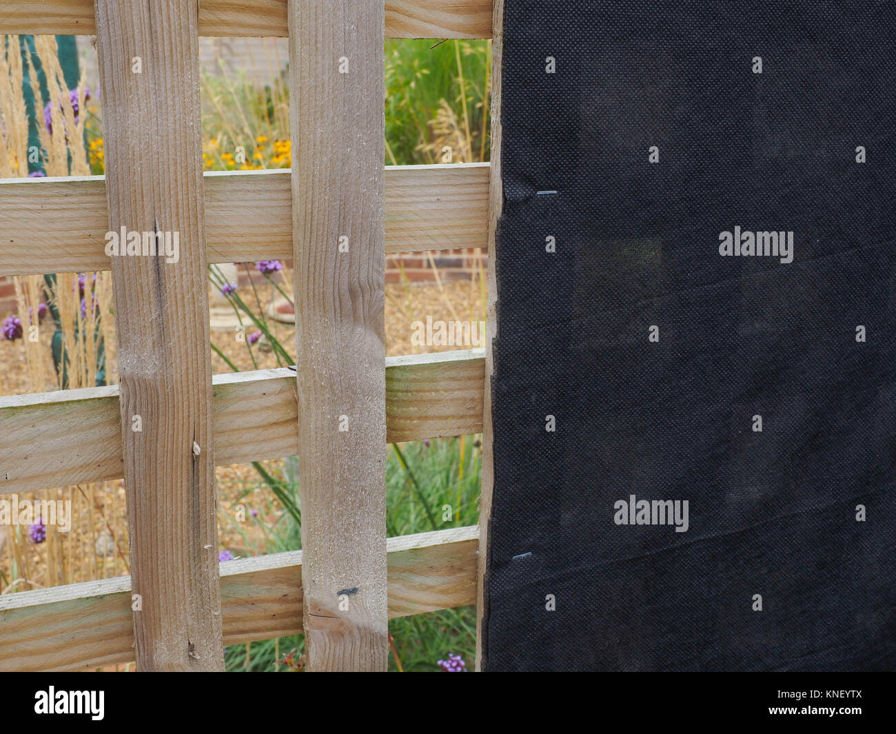 OPEN GARDEN TRELLIS WITH BLACK FABRIC STAPLED TO INSIDE THUS SHIELDING VIEW OF OIL TANK SITUATED IN REAR GARDEN - Stock Image