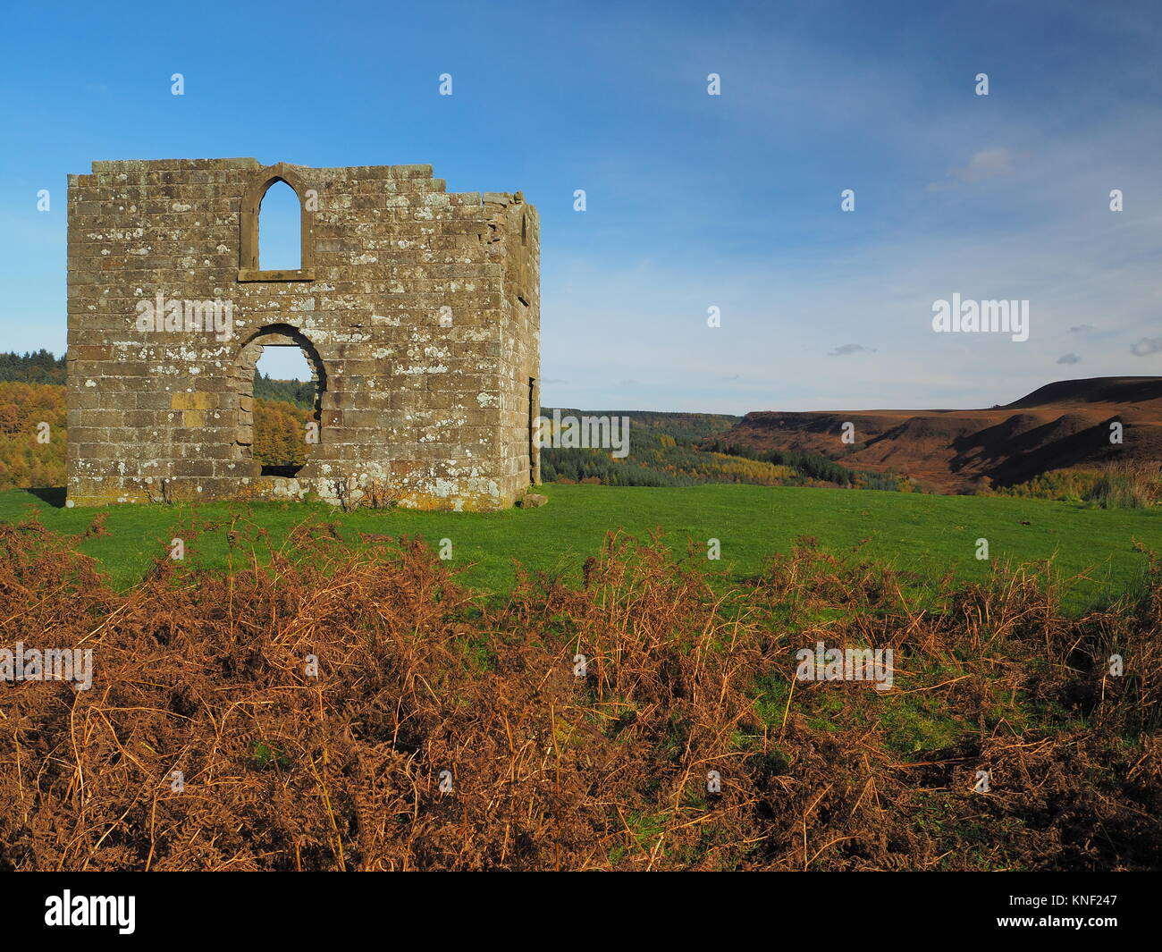 Ruins of Skelton Tower on the moors - Stock Image