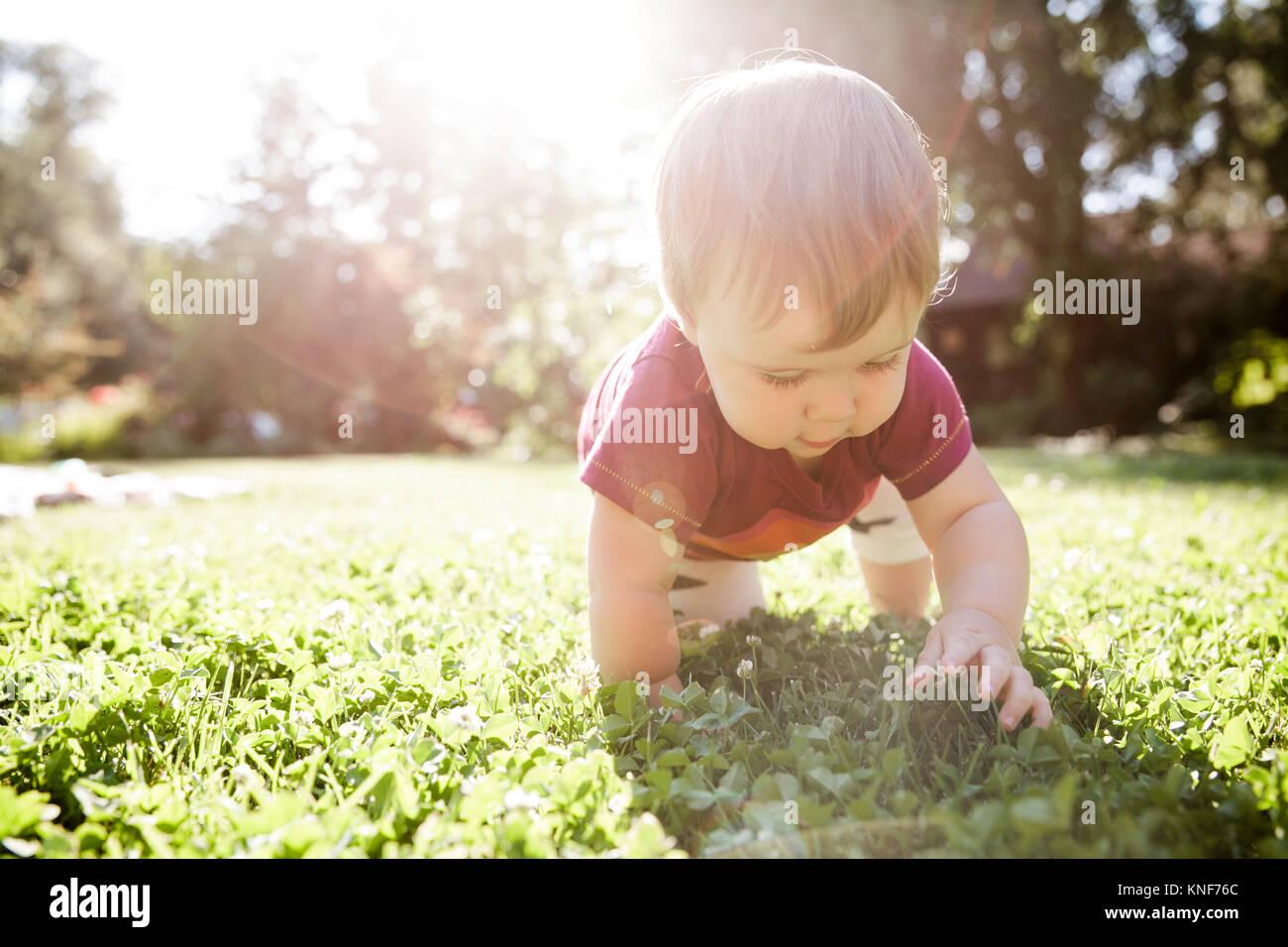 Baby boy crawling on grass - Stock Image
