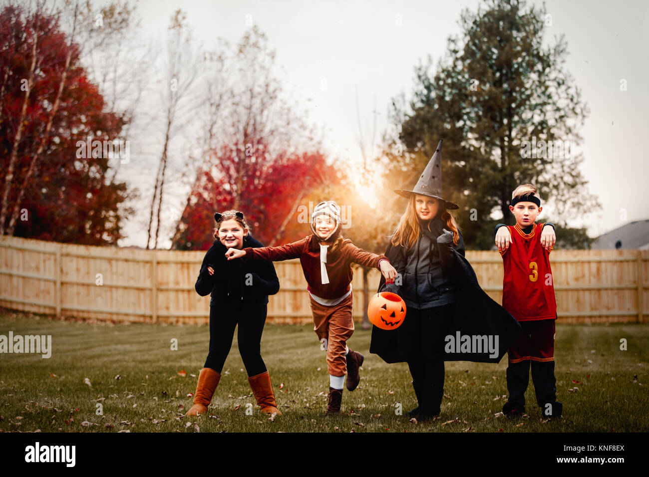 Portrait of boy and girls posed in halloween costumes in garden at sunset - Stock Image