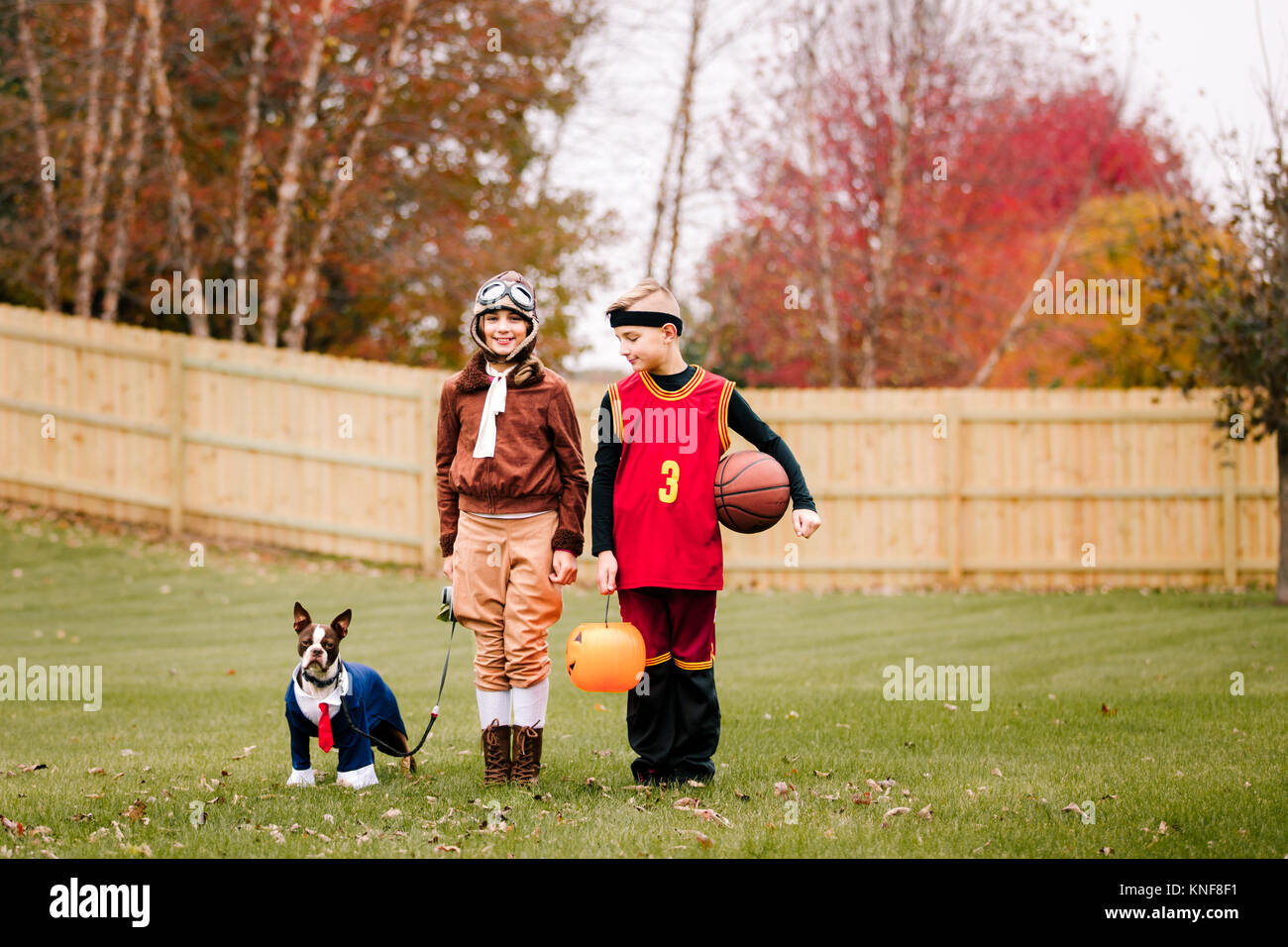 Portrait of boy, twin sister and boston terrier wearing halloween costumes in garden - Stock Image