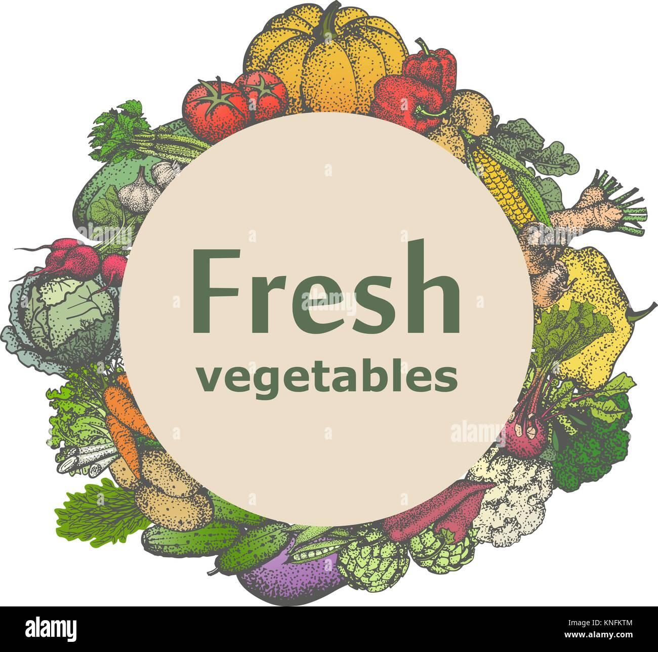 Vector mark sticker sign icon of fresh vegetables - Stock Vector