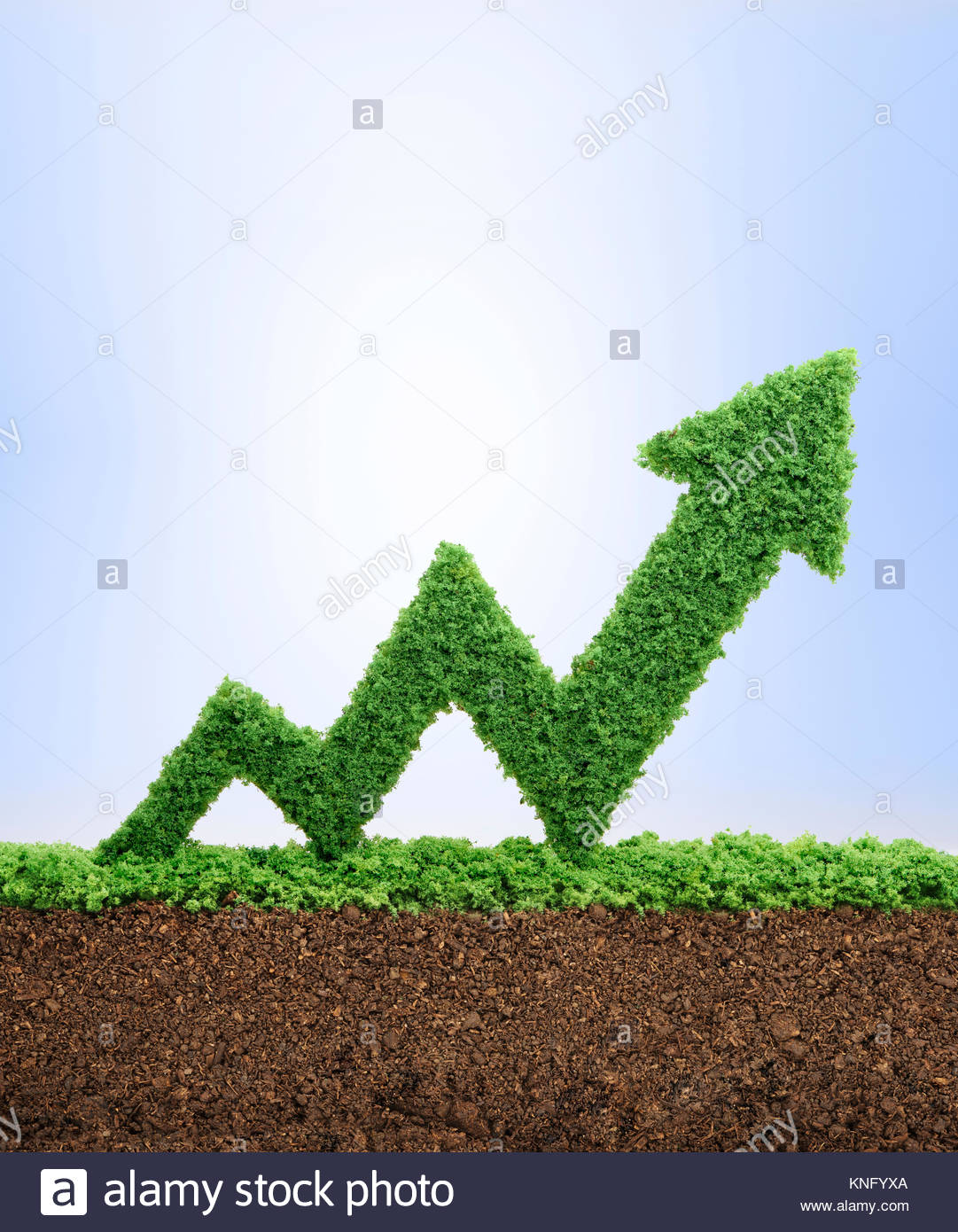 Grass growing in the shape of an arrow graph, symbolising the care and dedication needed for progress, success and - Stock Image