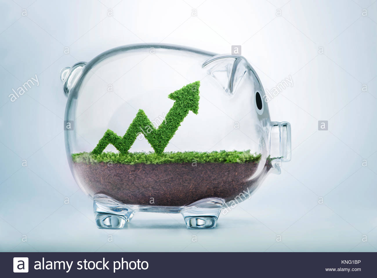 Grass growing in a graph shape, inside a piggy bank, symbolising the care, dedication and investment needed for - Stock Image