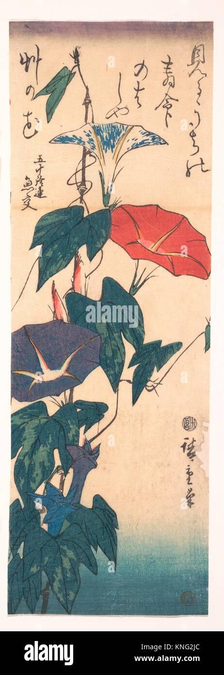 歌川広重画/Morning Glories with Poem by Gyoko. Artist: Utagawa - Stock Image
