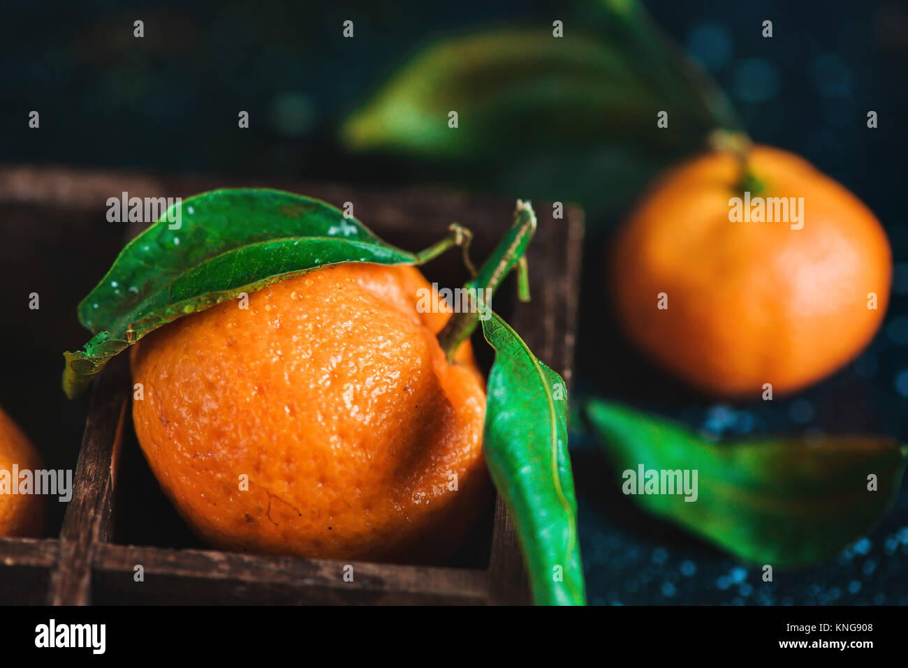 Close-up of tangerines in a wooden case on a dark background. Water drops on a surface. Dark food photography with - Stock Image