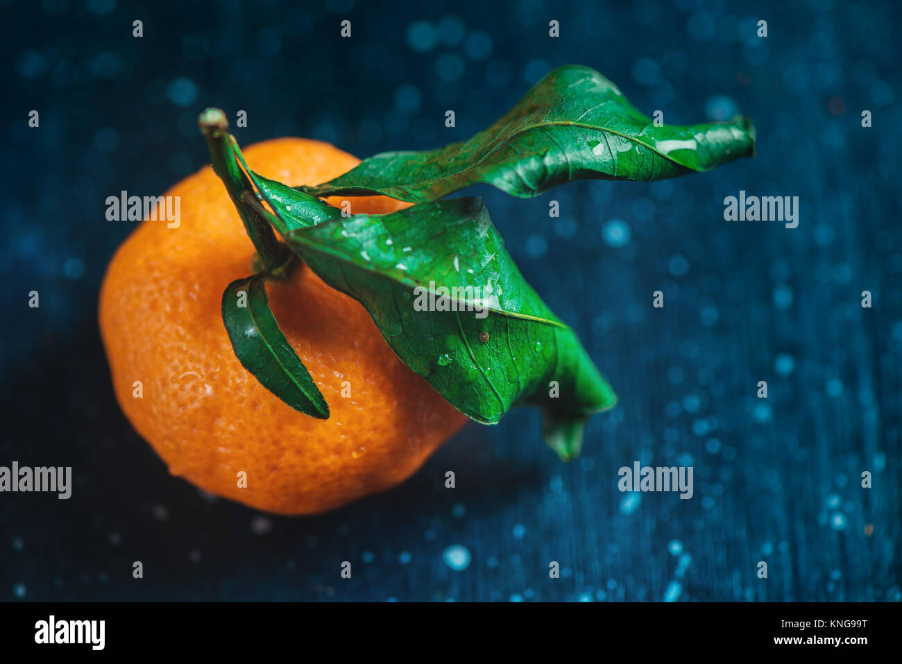 Tangerine close-up on a dark background. Water drops on a surface and green leaves. Dark food photography with vibrant - Stock Image
