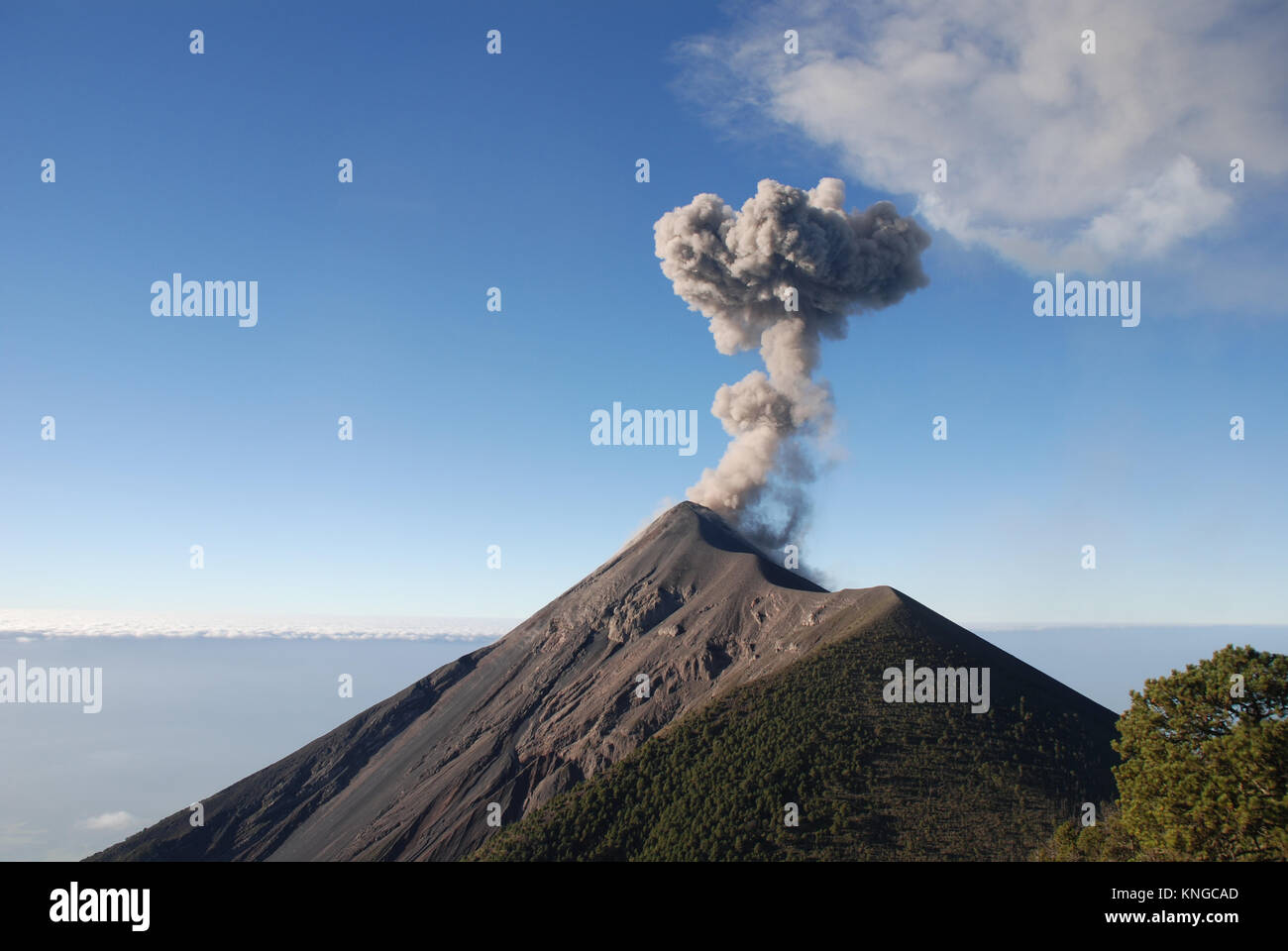 an eruption of Fuego volcano in Guatemala which is  the worlds most continuously active volcano - Stock Image