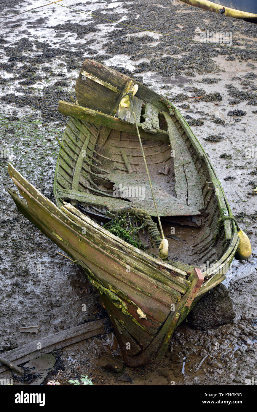 An old rotten wooden boat left high and dry and stranded on the mud in a tidal river with rotting timbers and green - Stock Image