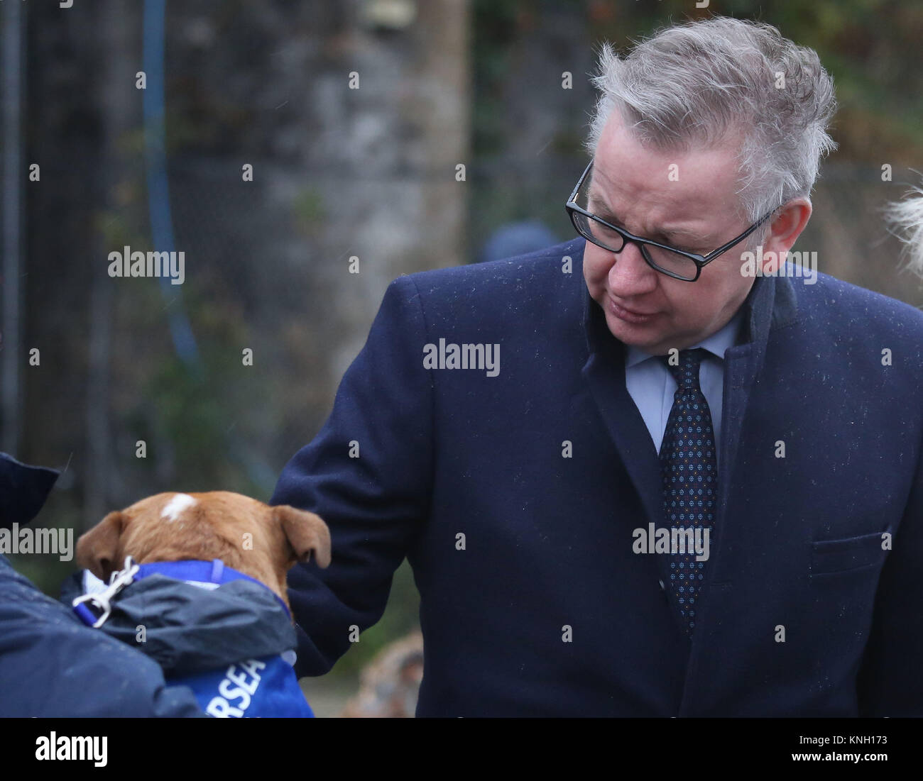 Embargoed to 0001 Tuesday December 12 Secretary of State for Environment, Michael Gove, meets Enid, an 18 month - Stock Image