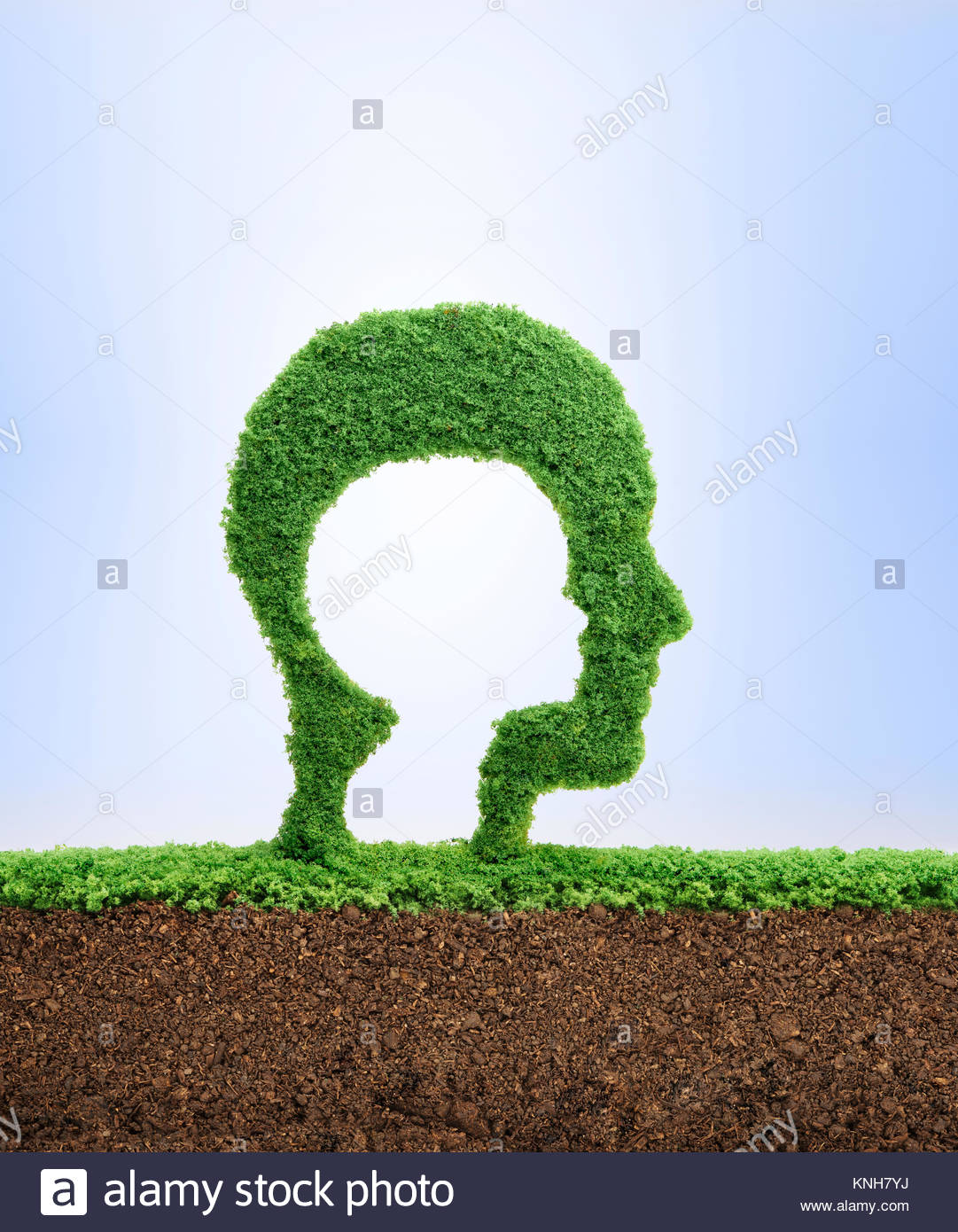 Childhood is the seed of adulthood. Childhood nostalgia concept, with grass growing in the shape of a cut out child - Stock Image