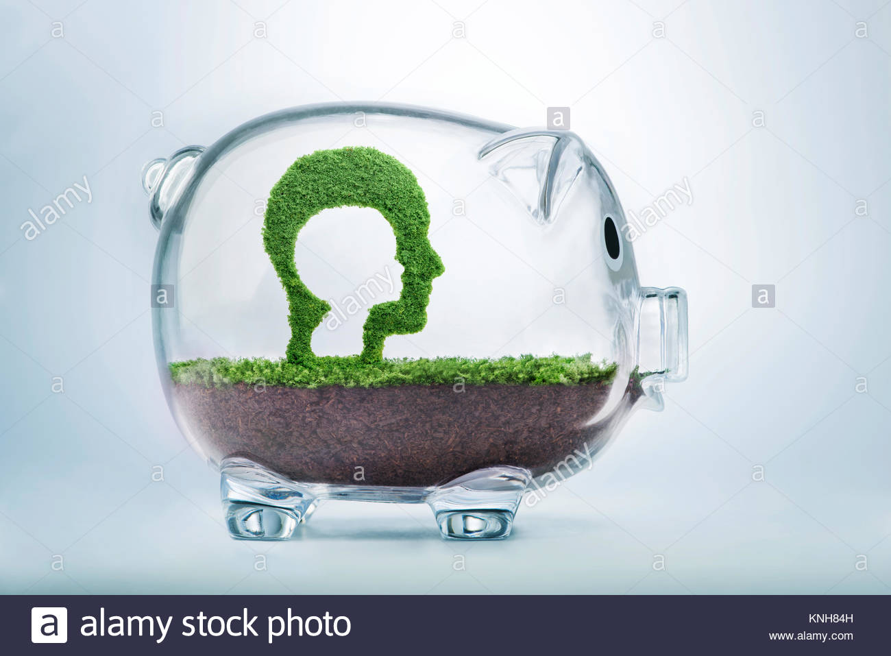 Care, dedication and investment are needed during childhood. Grass growing in the shape of a cut out child head - Stock Image