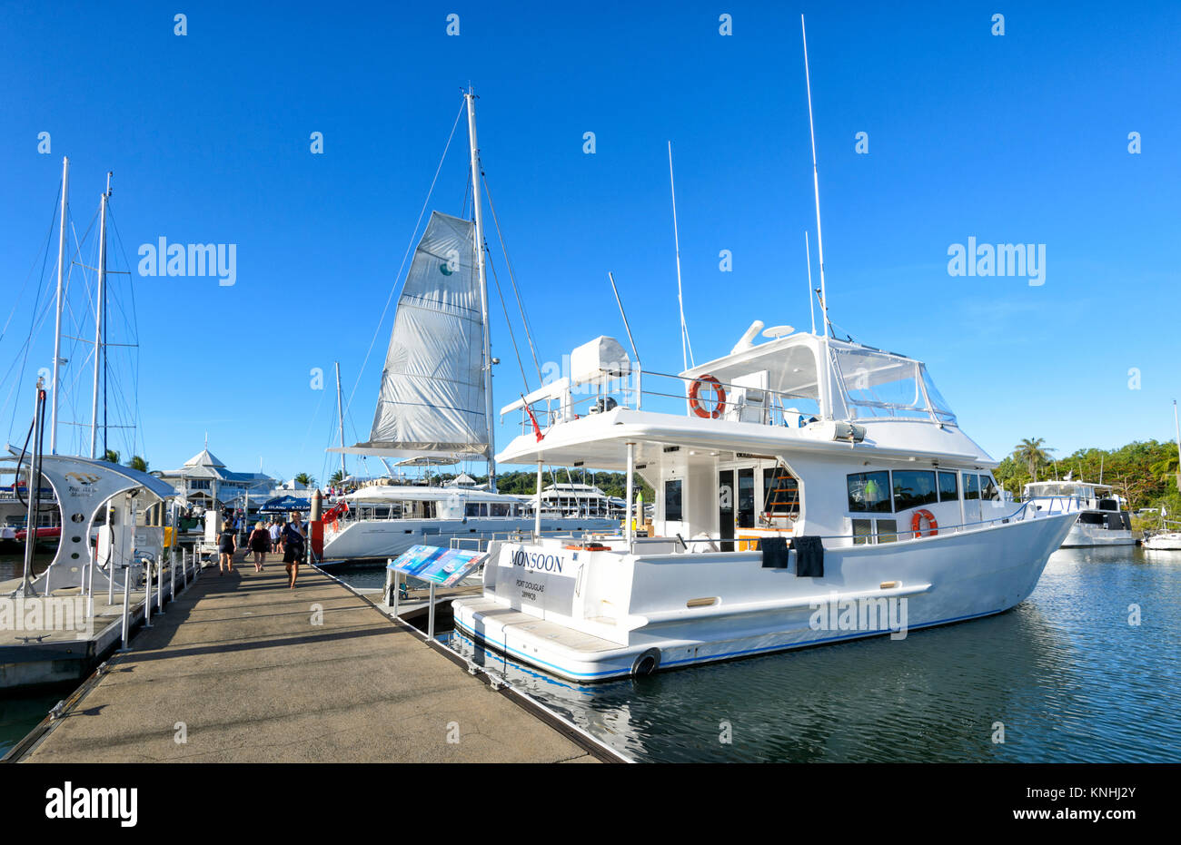 Tourist cruise boats at the Reef Marina, Port Douglas, Far North Queensland, FNQ, QLD, Australia - Stock Image