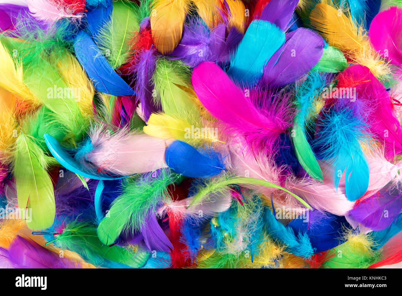 Background texture of brightly colored dyed bird feathers in the colors of the rainbow or spectrum in a random pile - Stock Image