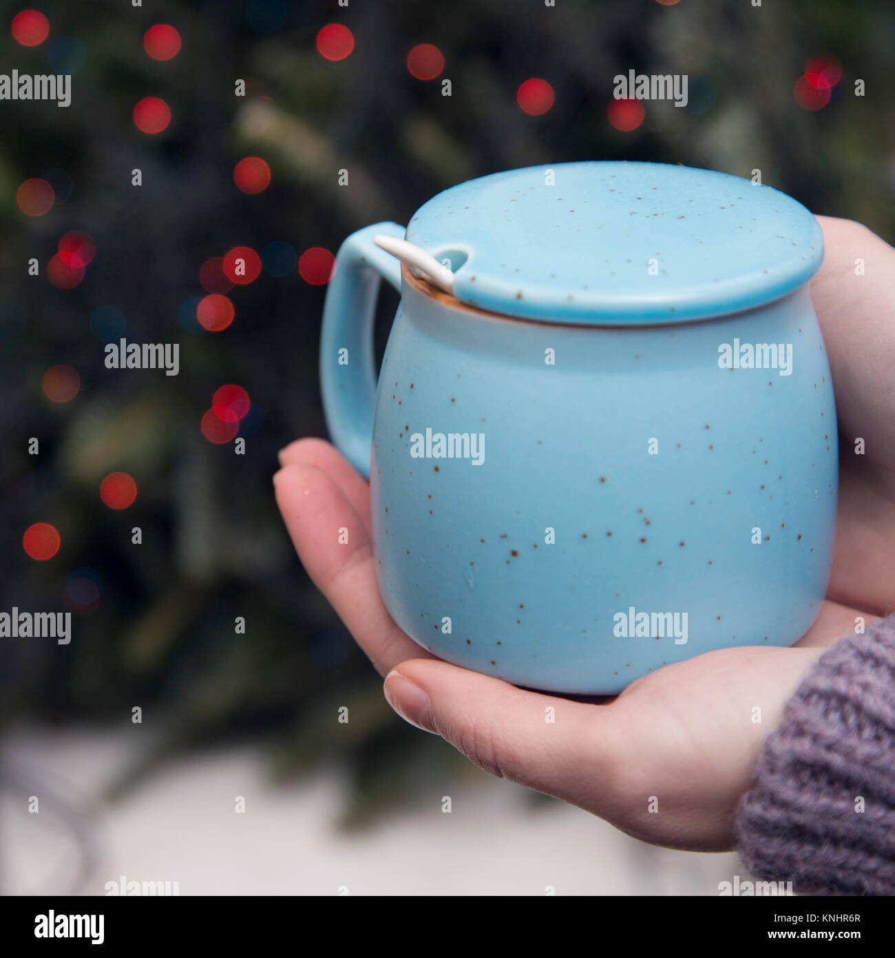 Hands holding a sugar bowl against blurred Christmas tree background - Stock Image