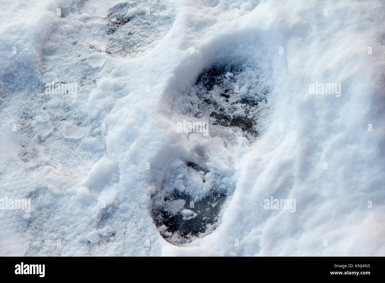 footprint in compacted snow showing black ice underneath newtownabbey northern ireland uk - Stock Image