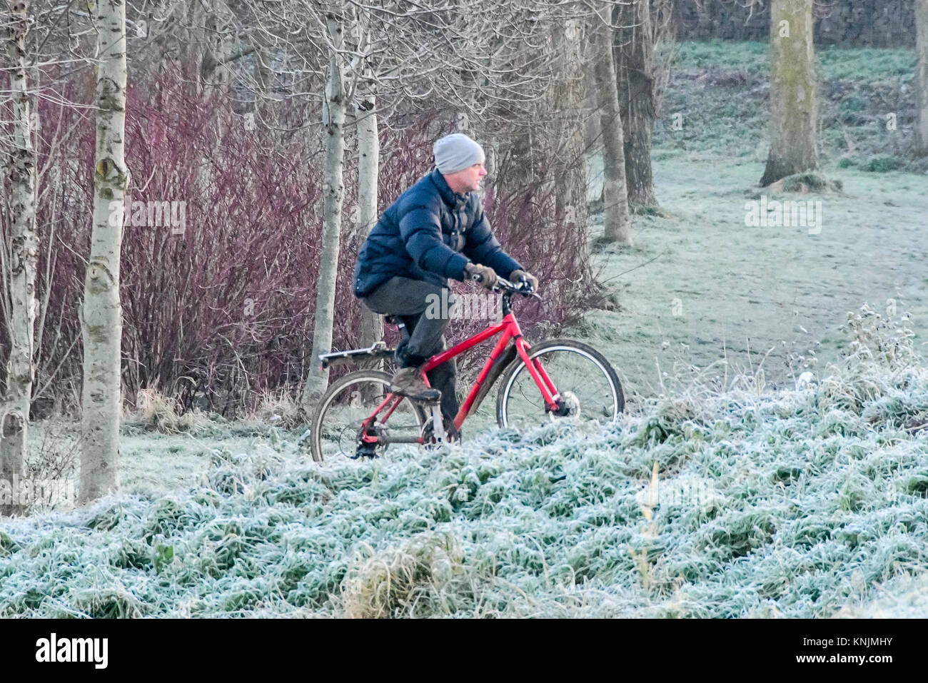 Bridport, Dorset, UK.  12th December 2017.  UK Weather.  A cyclist riding through a frost covered Askers Meadow - Stock Image