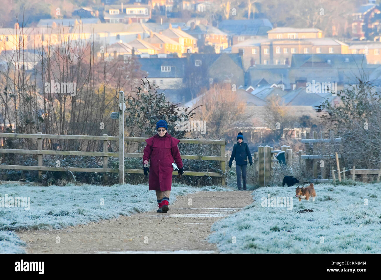 Bridport, Dorset, UK.  12th December 2017.  UK Weather.  A dog walker strolling through a frost covered Askers Meadow - Stock Image