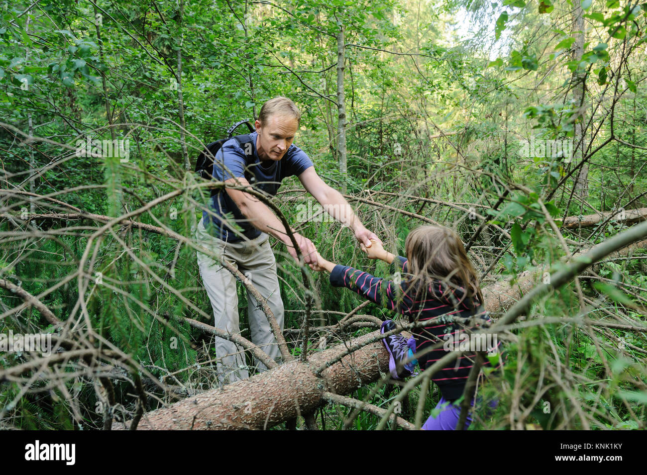 Overcoming obstacles while walking in the forest. The adult is helping the girl to cross the fallen tree. - Stock Image