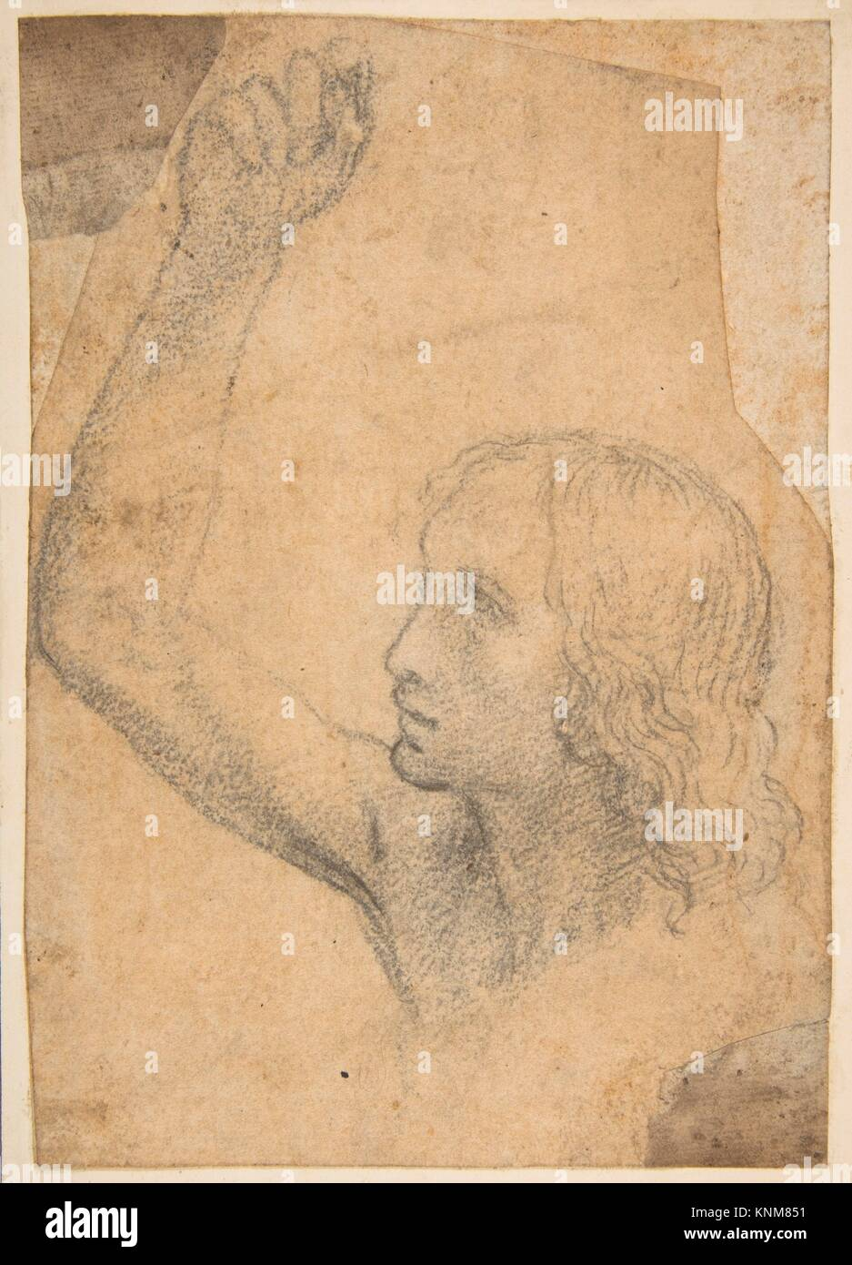 Youth with Right Arm Raised in a Shoulder-Length Portrayal (preparatory study for St. Sebastian). Artist: Timoteo - Stock Image