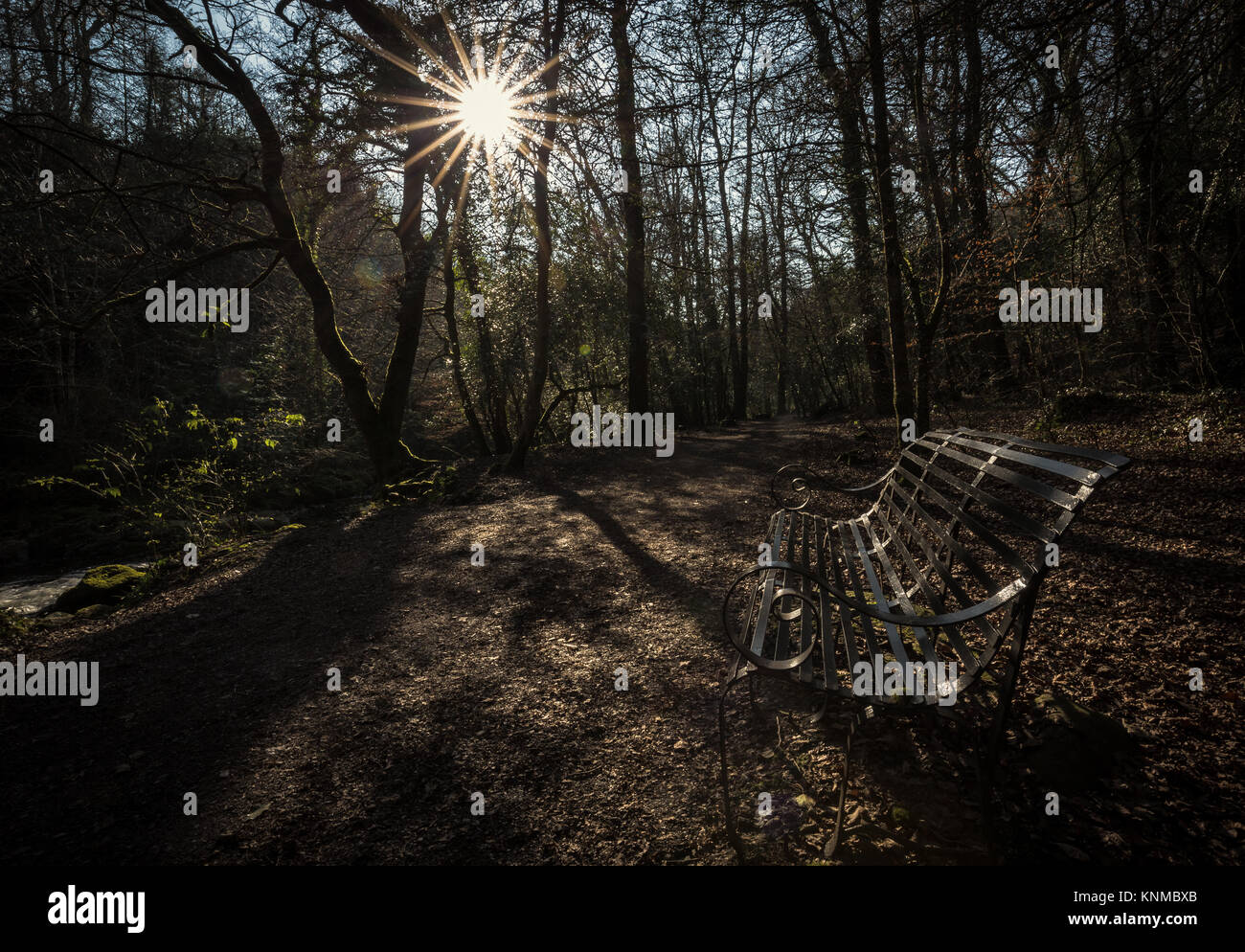 Sunburst over bench on riverside walk - Stock Image