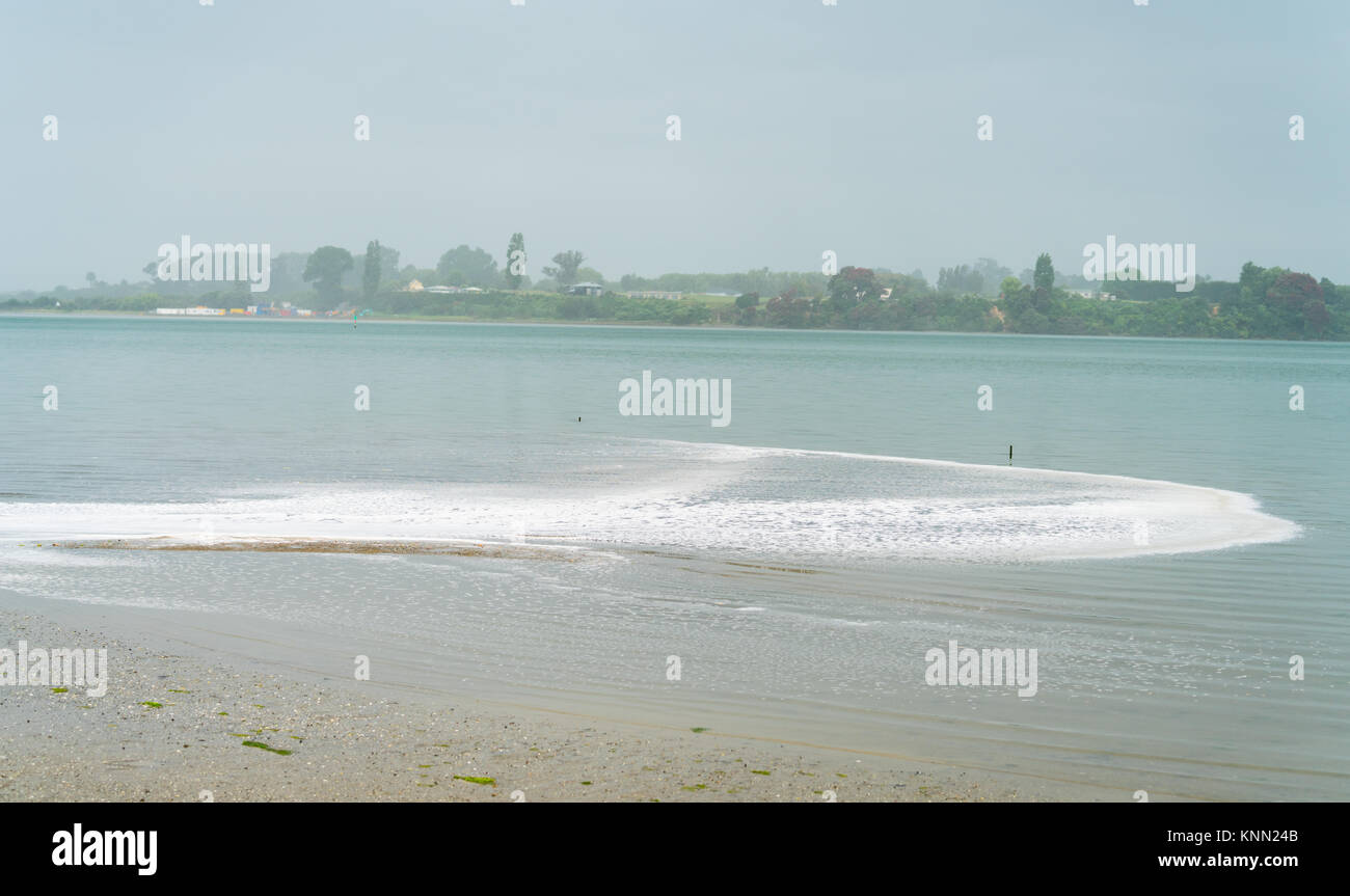 White foam pollution washes into bay when Tauranga area hit with sudden downpour. - Stock Image