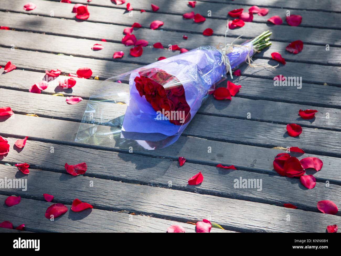Bunch of red roses thrown to ground surrounded by red petals - Stock Image
