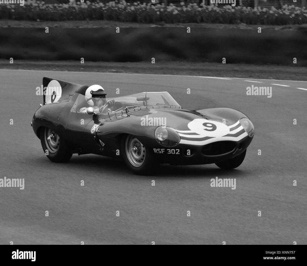 Christian Glasel, Jaguar D Type, Long Nose, RSF 302, Salvadori Cup, Sports  Prototypes, Goodwood 73rd MM March 2015, 73rd, 73rd Members Meeting, Action