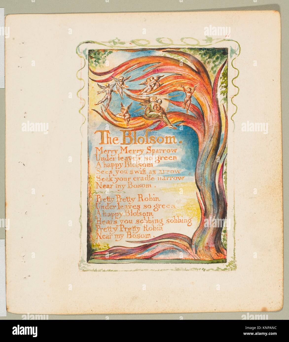 Songs of Innocence and of Experience: The Blossom: Merry Merry Stock ...