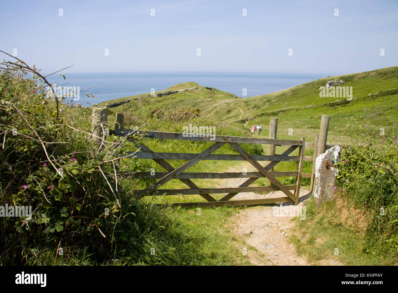 Gate and footpath leading to Barras Nose in north Cornwall, England. - Stock Image