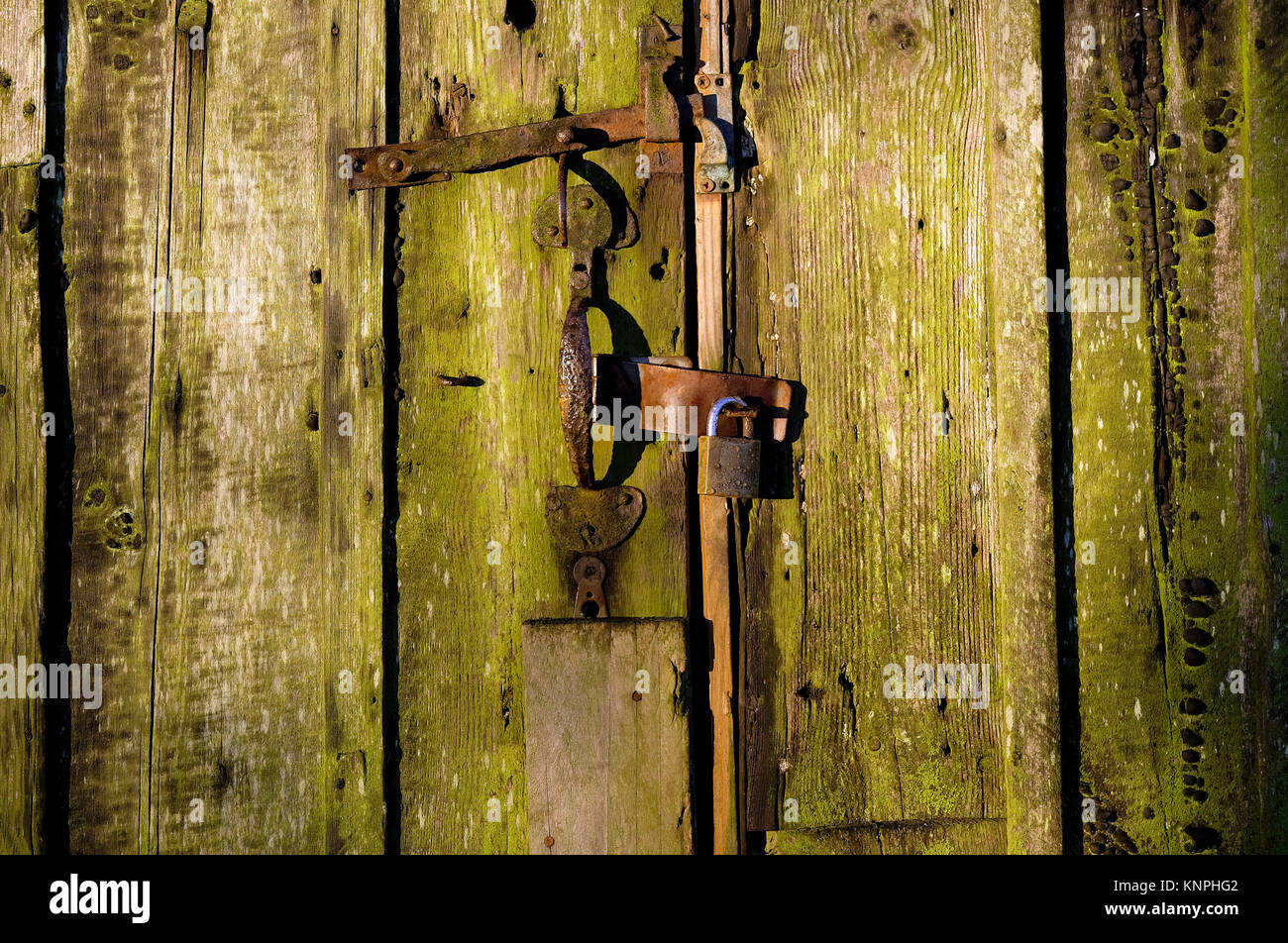 old weathered wooden garden shed door with padlock, norfolk, england Stock Photo