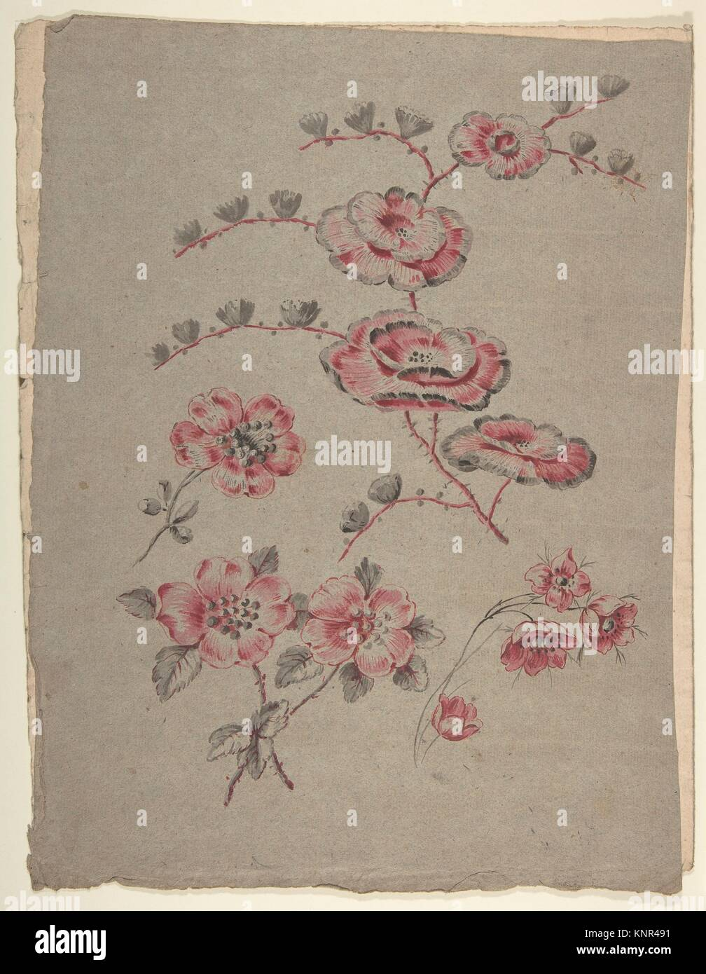 Pink Flower Pattern. Artist: Anonymous, French, 19th century; Date: 19th century; Medium: Graphite, watercolor, - Stock Image