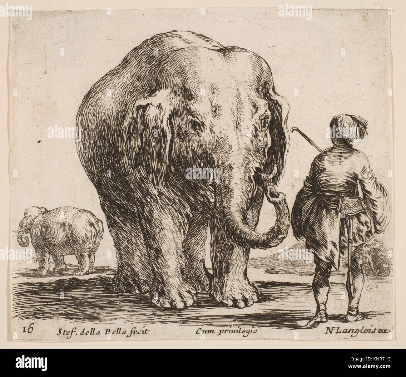 Plate 16: an elephant in center, his mahout standing to the right wearing an Oriental costume, another elephant - Stock Image