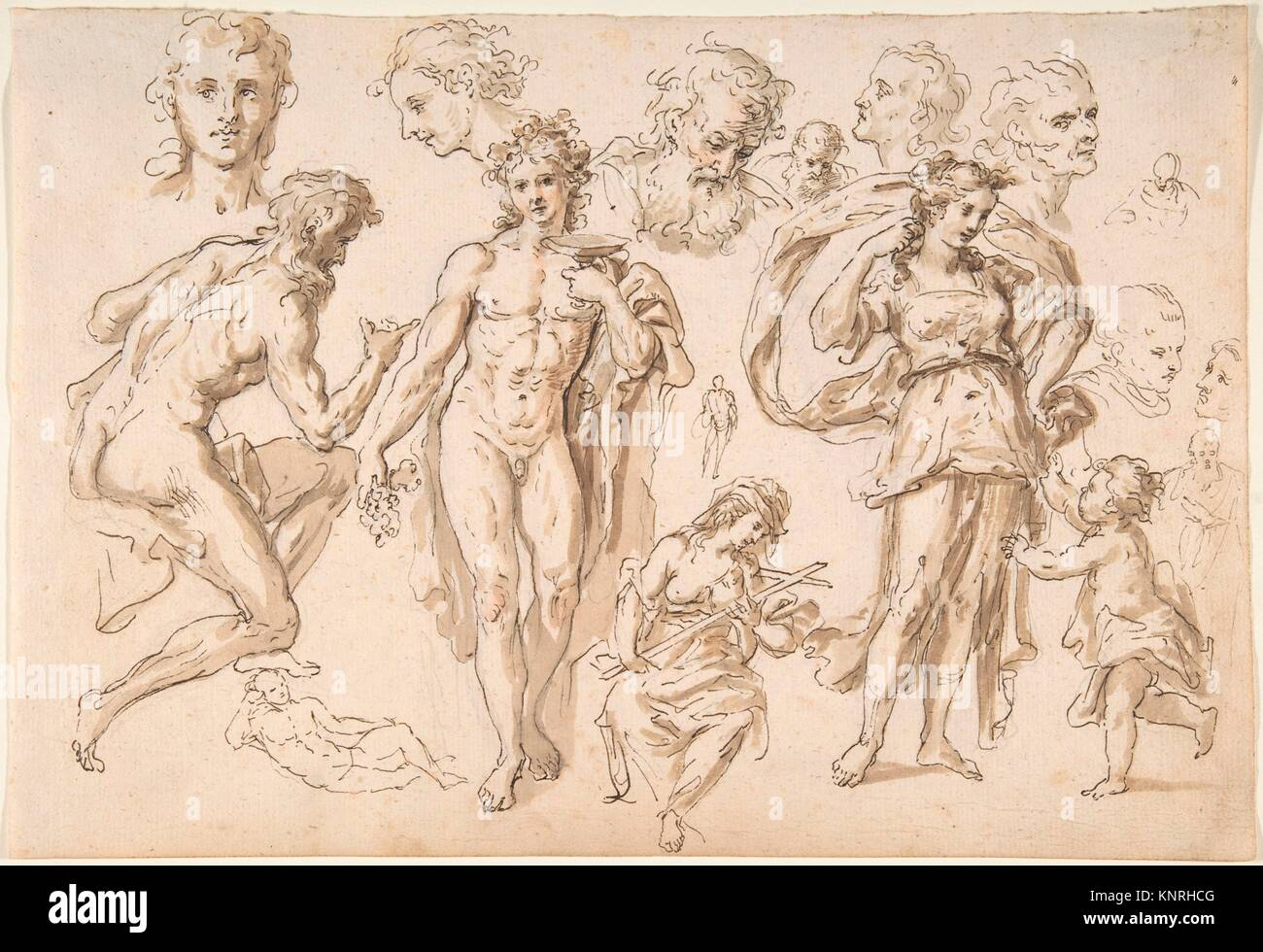 Recto: figure and head-studies (including Bacchus); Verso: four main figure studies repeated from the recto. Artist: - Stock Image
