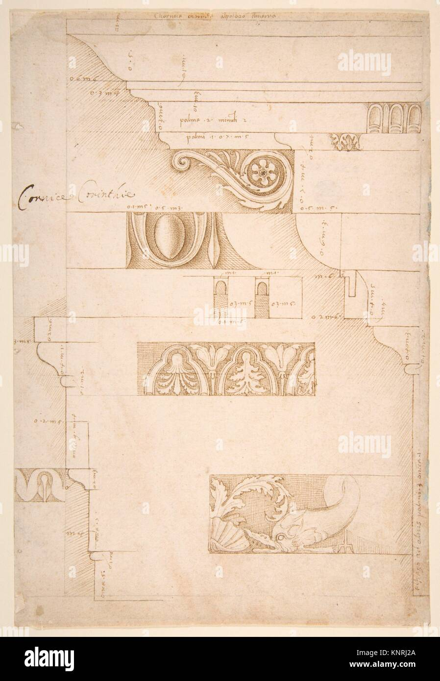 Architectural Study: The Measured Profiles of the Cornice and Entablature of the Colonnacce from the Forum Transitorium - Stock Image