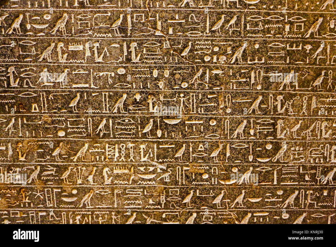 How many hieroglyphs are in the Egyptian letter
