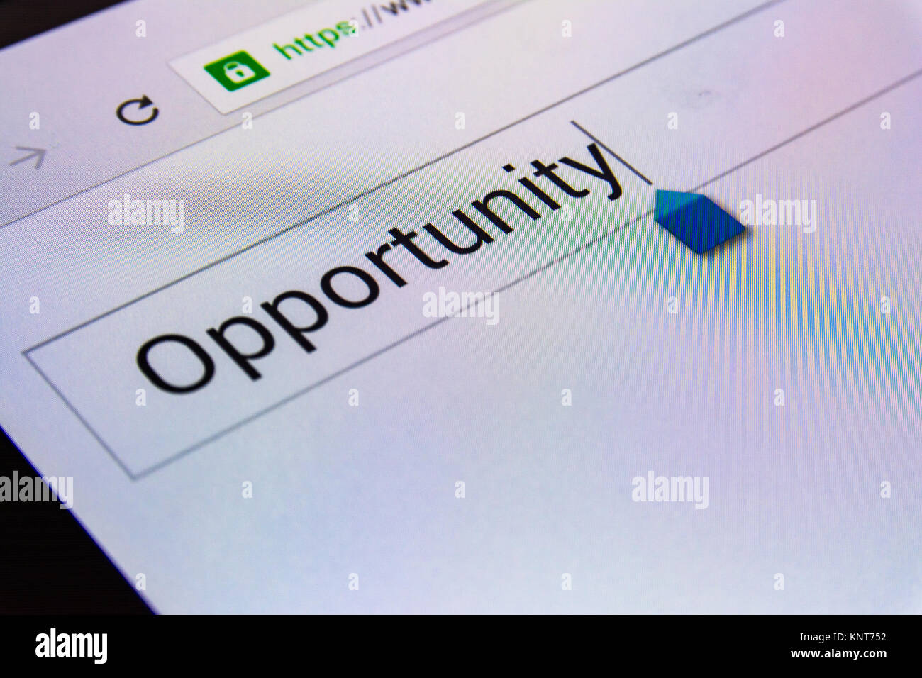 Magnifying Glass Search Box Empty Blank Internet Screen Opportunity - Stock Image