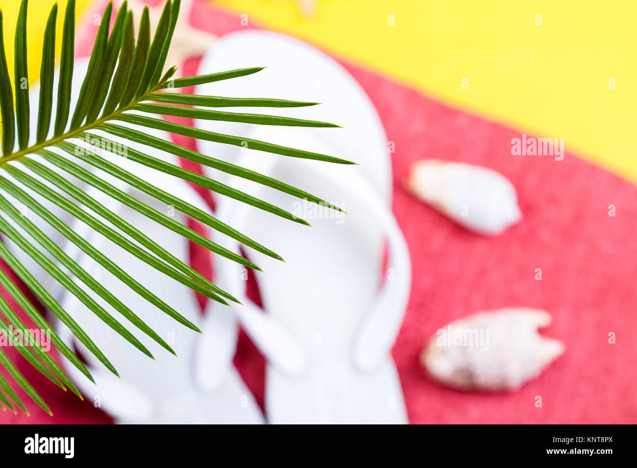 Tropical Background Palm Trees Branches with blurred Set of Woman's Things Accessories to Beach Season - Stock Image