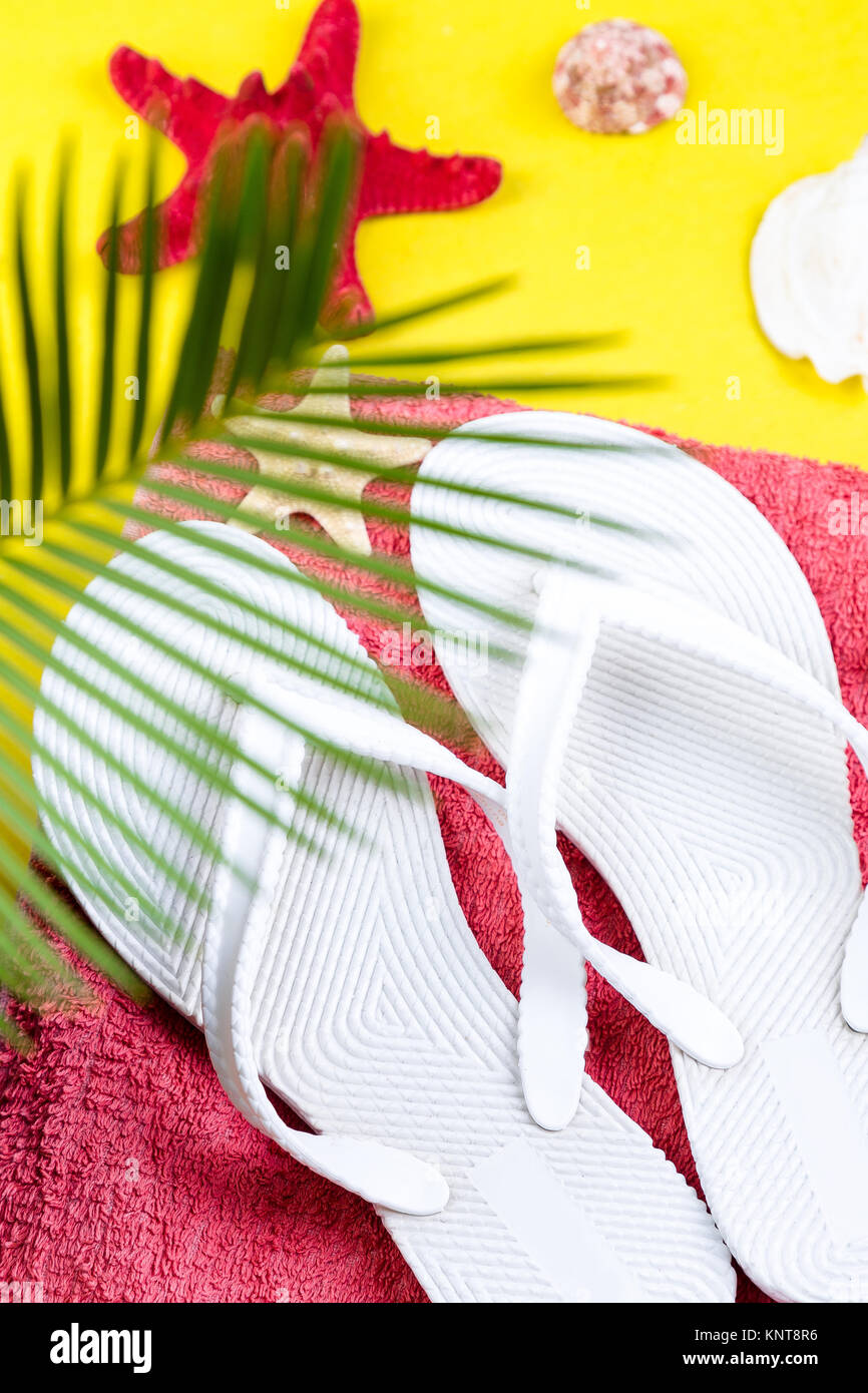 Tropical Background Palm Trees Branches with blurred Set of Woman's Things Accessories to Beach Season Stock Photo